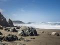 Beach2_1000